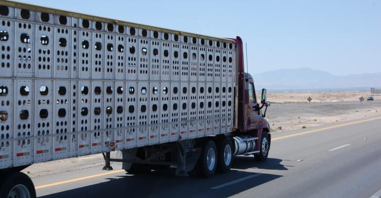 hours of service exemption for livestock haulers